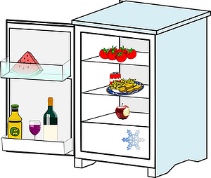 small refrigerator with freezer